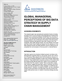 Global Managerial Perceptions of Big Data Strategy in SCM